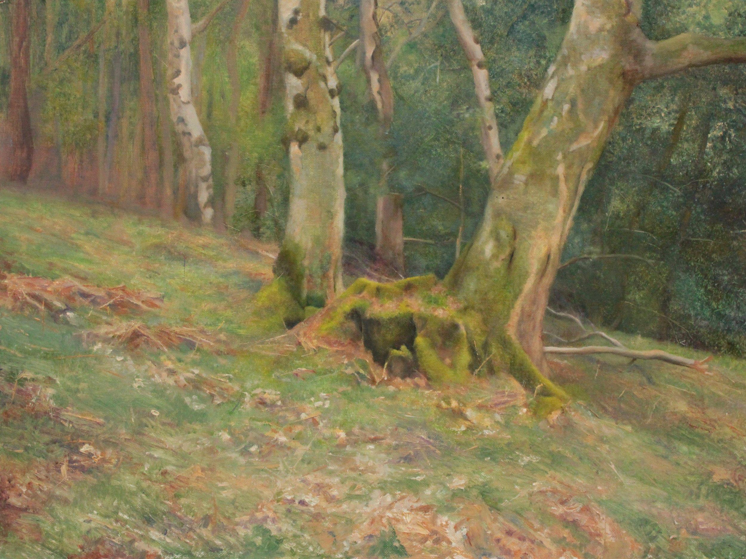 Mossy Tree in Spring , Oil on panel, Chris Polunin