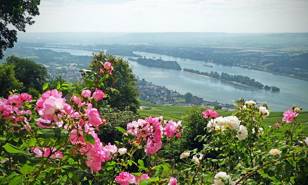 Rüdesheim am Rhein, Alemanha.