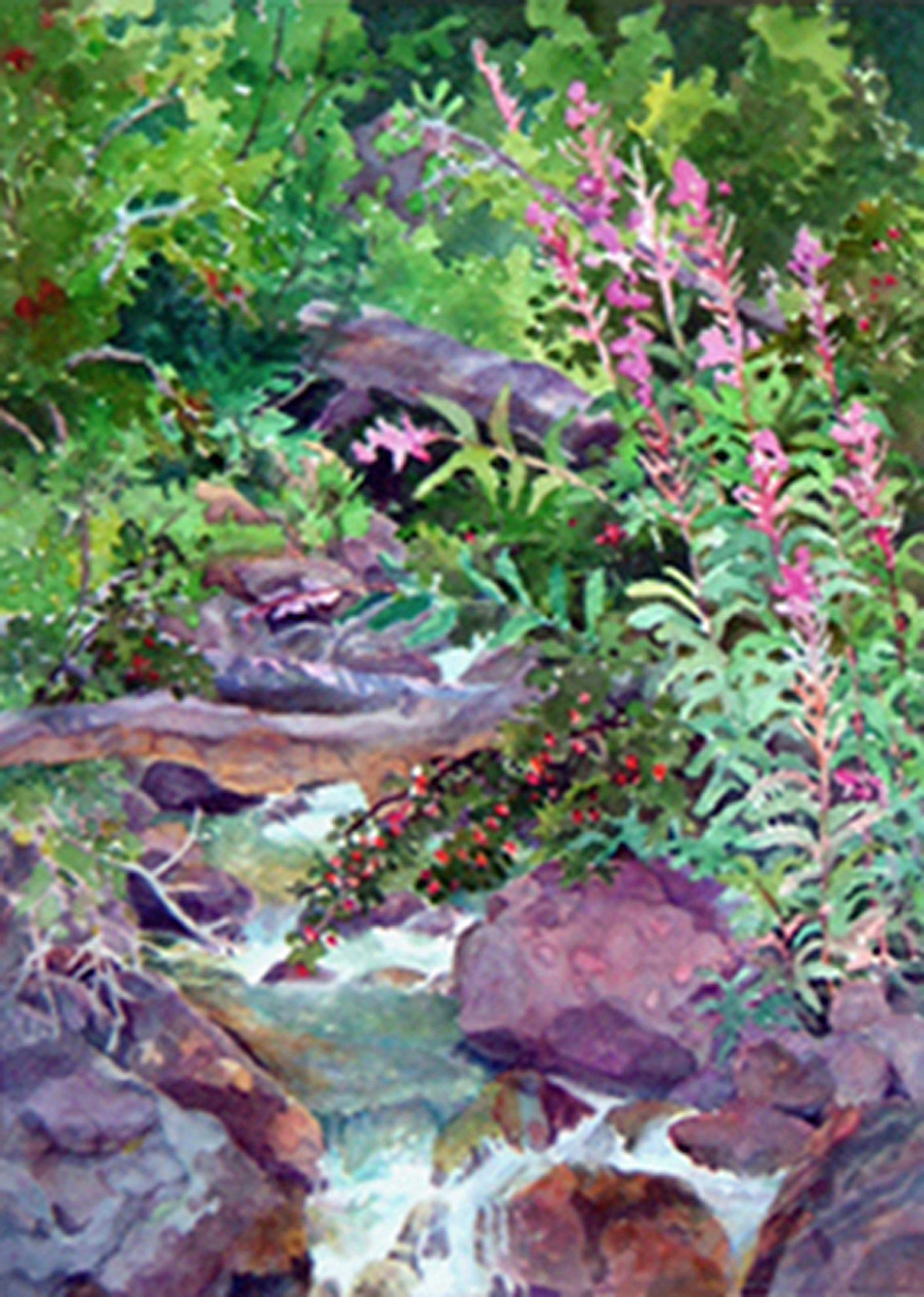 Spanish Creek Fireweed600.jpg