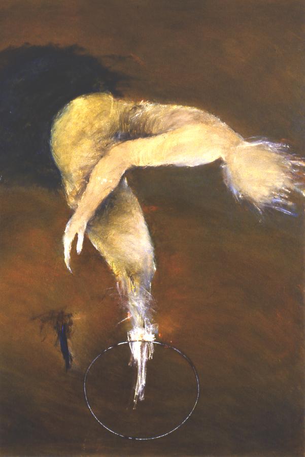 P5. SPYRAL RYDER.oil on canvas.48x30. 2005.jpg