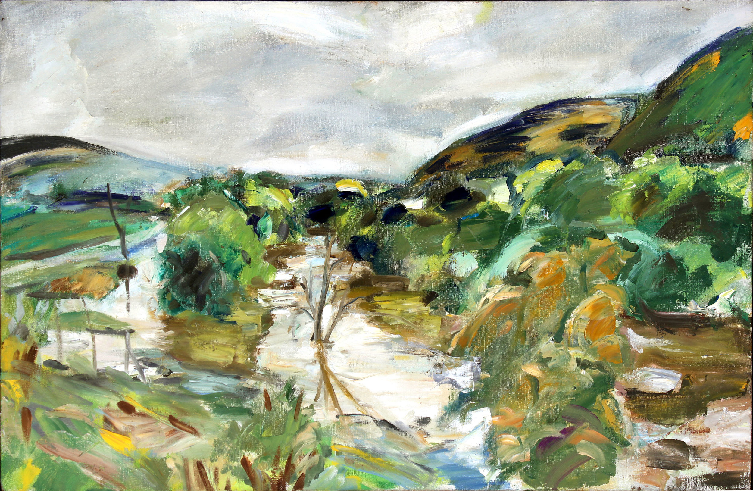 NB6-Flooded-Susquehanna-24x37-oil.canvas.jpg