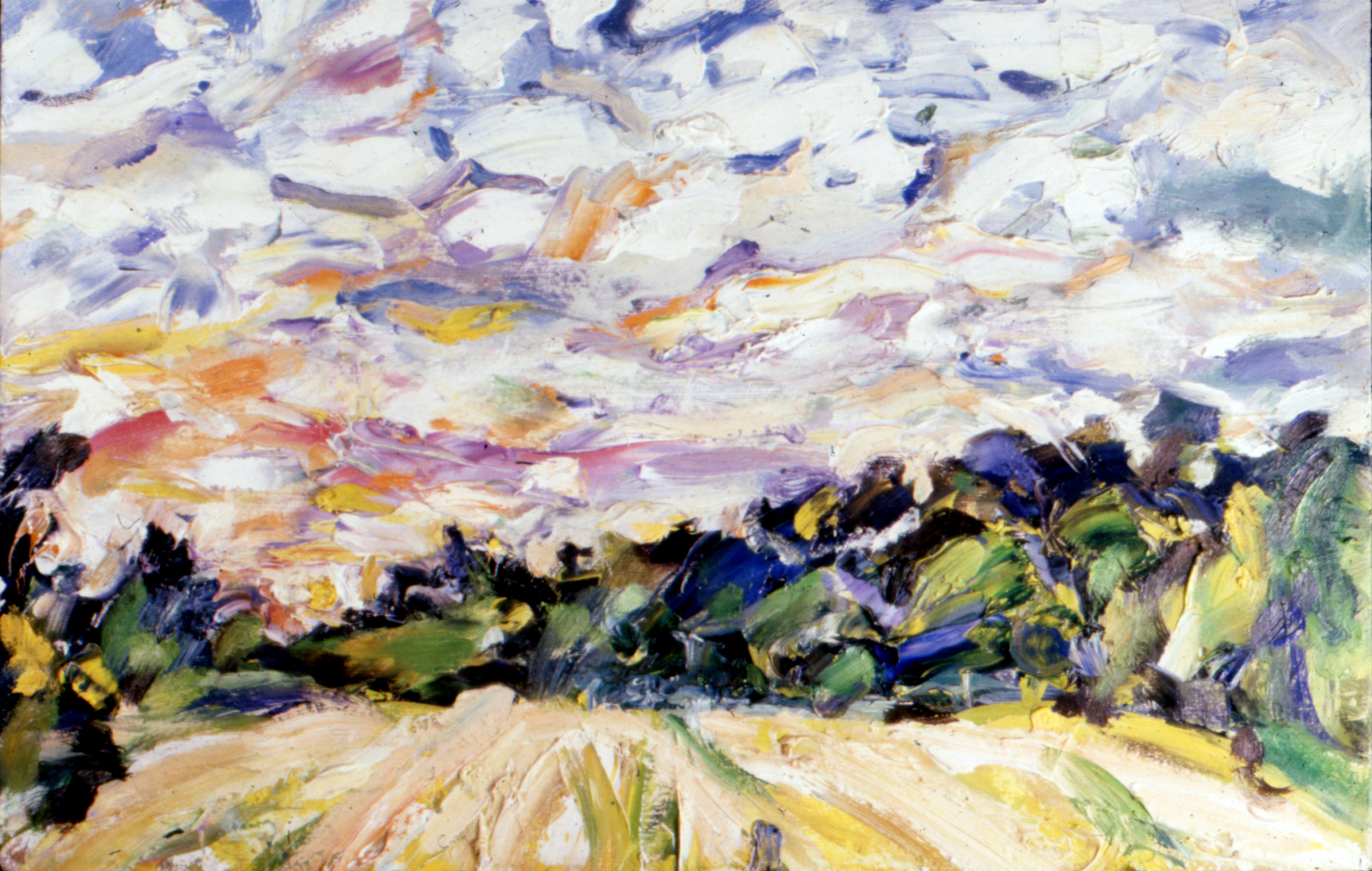 NB22.Hayfield-Sunset-9.5x14.5-oil-on-panel.jpg