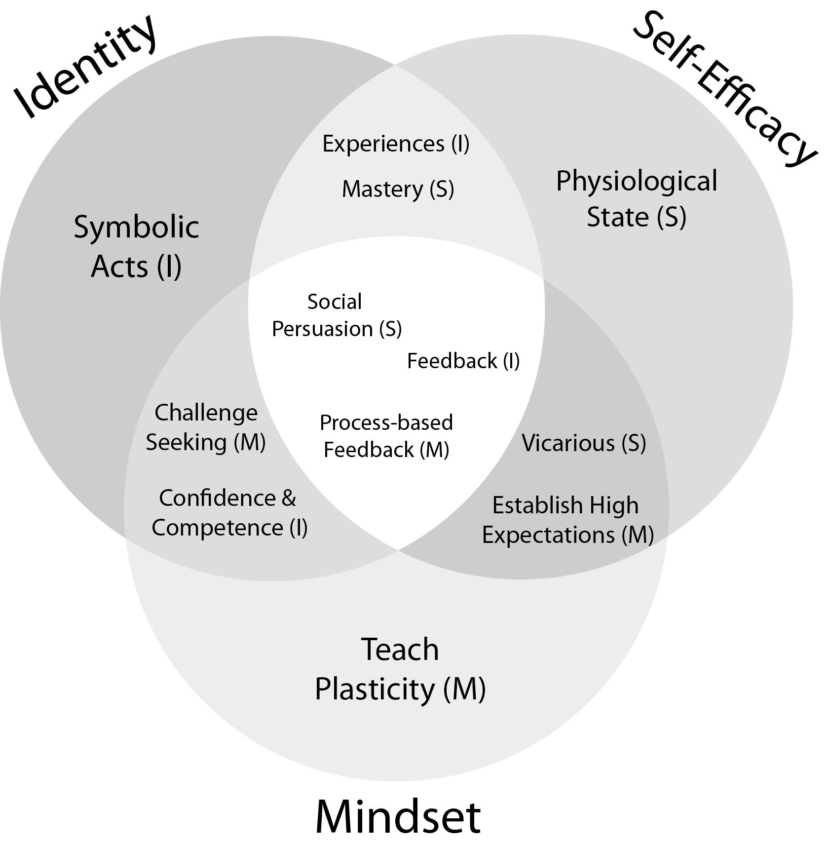 Venn diagram of the overlapping elements of the theories of identity, self-efficacy, and mindsets.