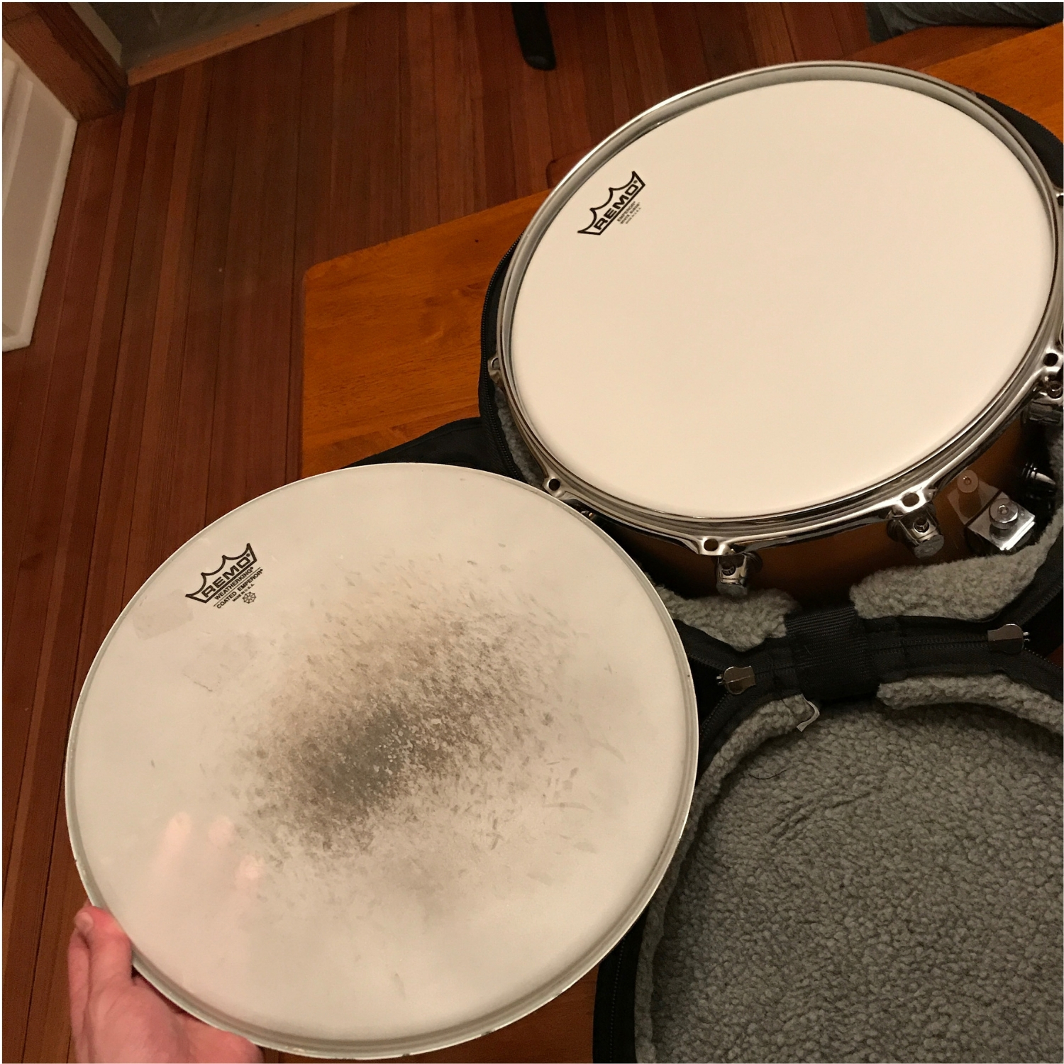 New and Old Remo Snare Heads