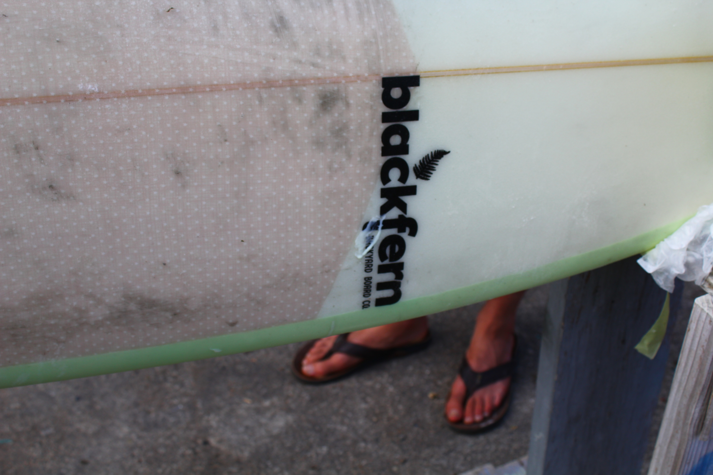 blackfern surfboar