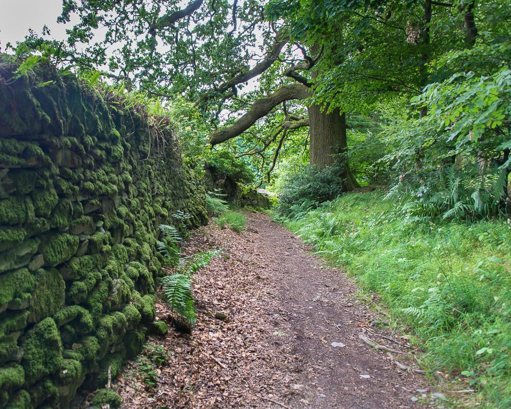 hiking in england-7975.jpg