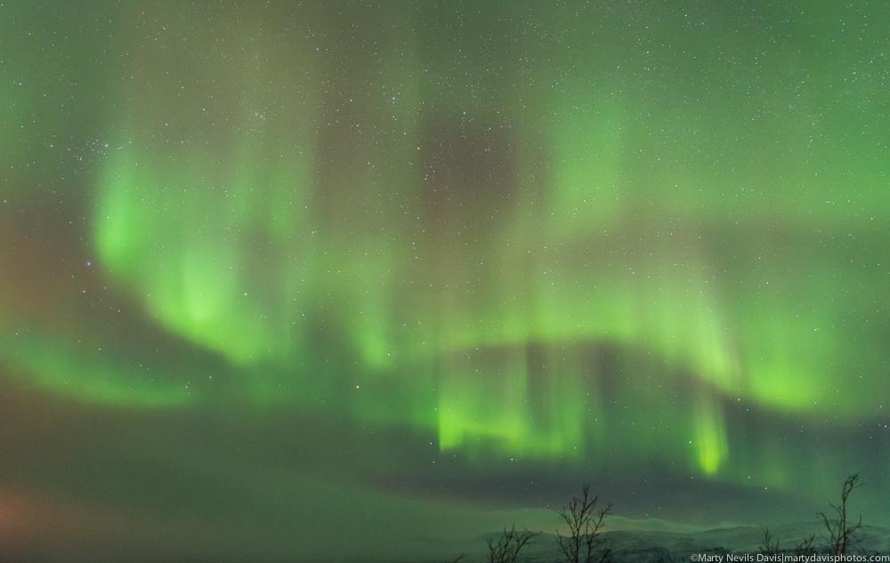 aurora_ LR 1000px-2599.jpg