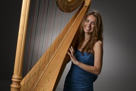 detroit-harp-cheryl-losey-feder.jpg