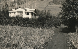 Joy's family home near Gympie, Queensland