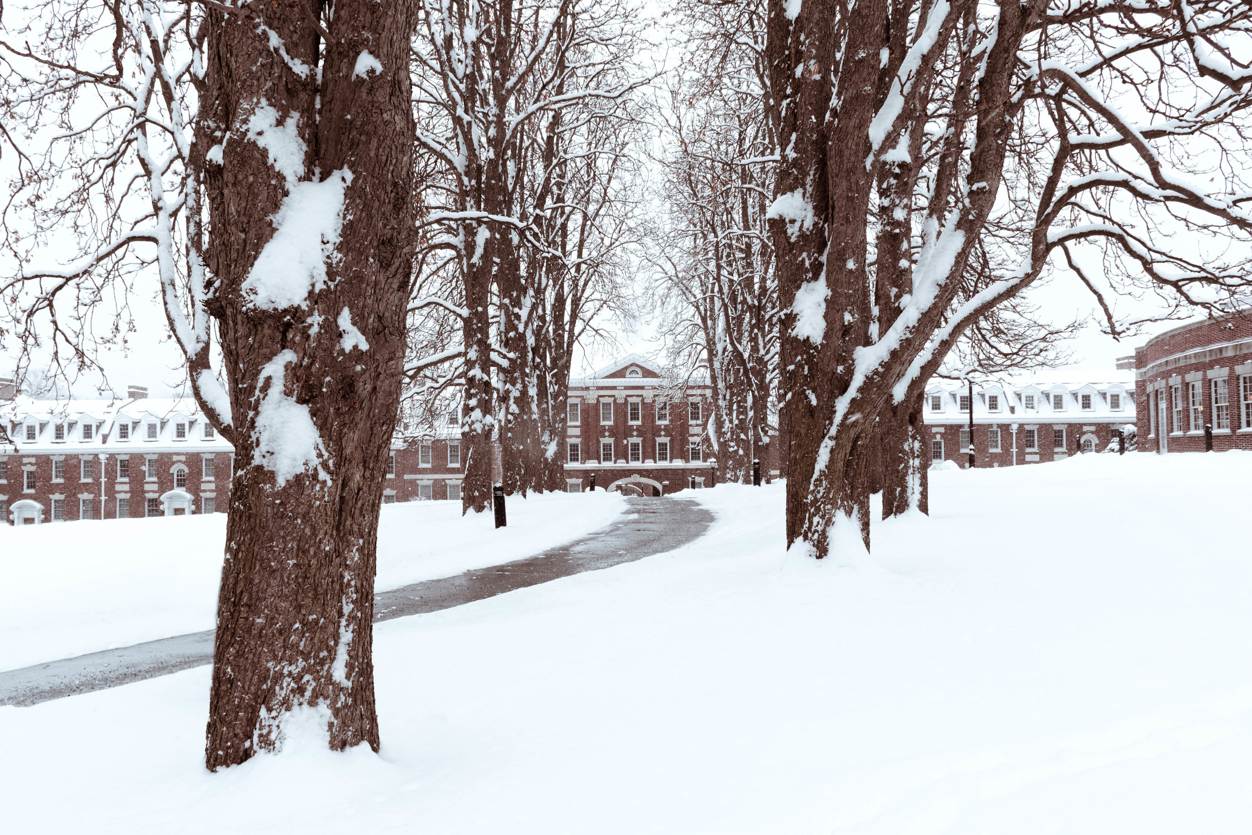 Quad in Winter-2.jpg