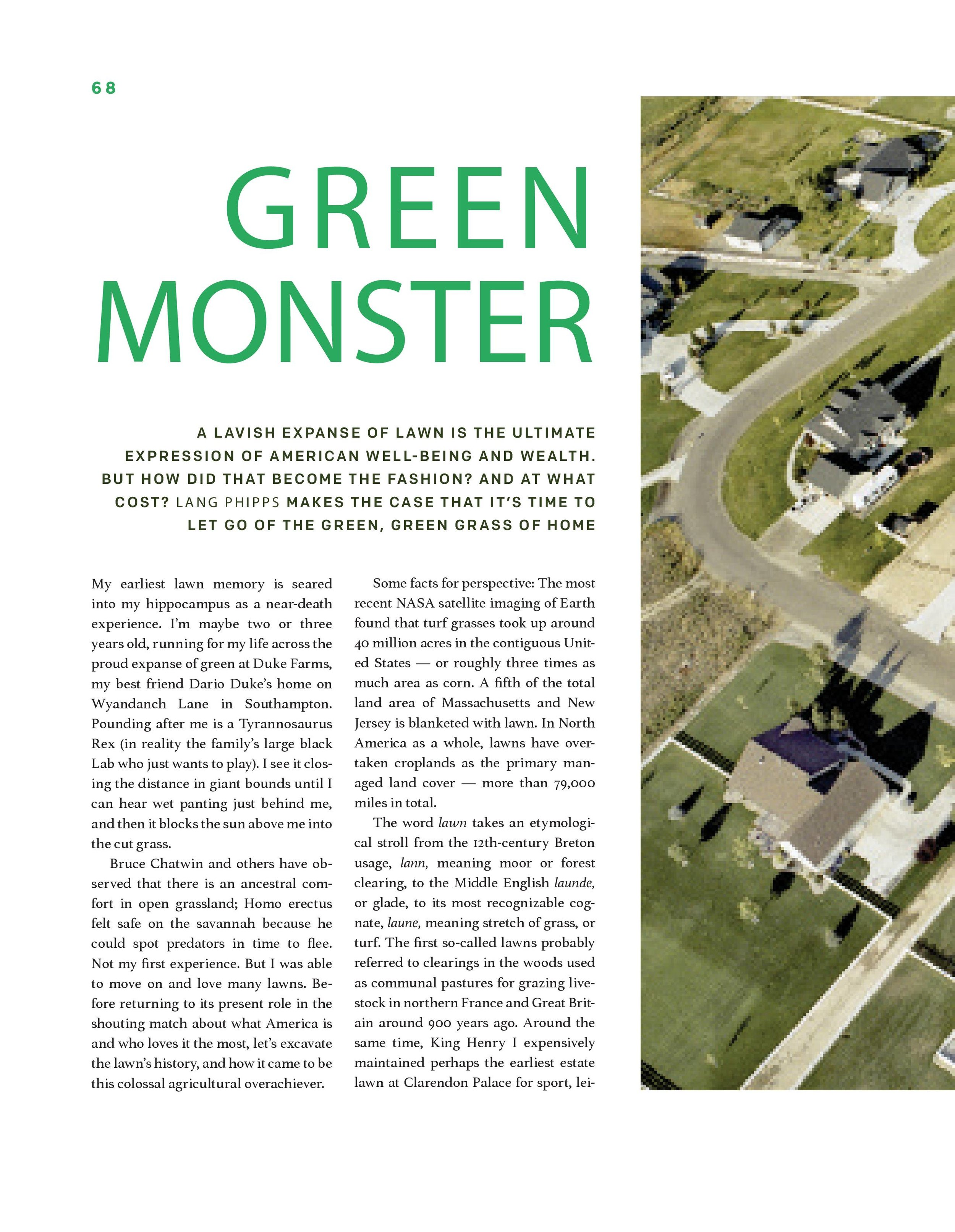 GREEN_MONSTER for LANG-2.jpg
