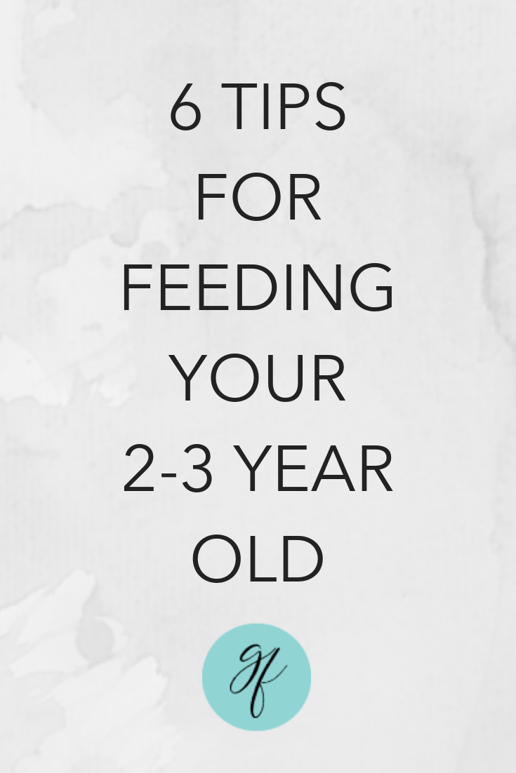 6 Tips for Feeding Your 2-3 year old.png