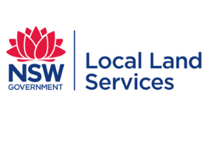 LOCAL LAND SERVICES
