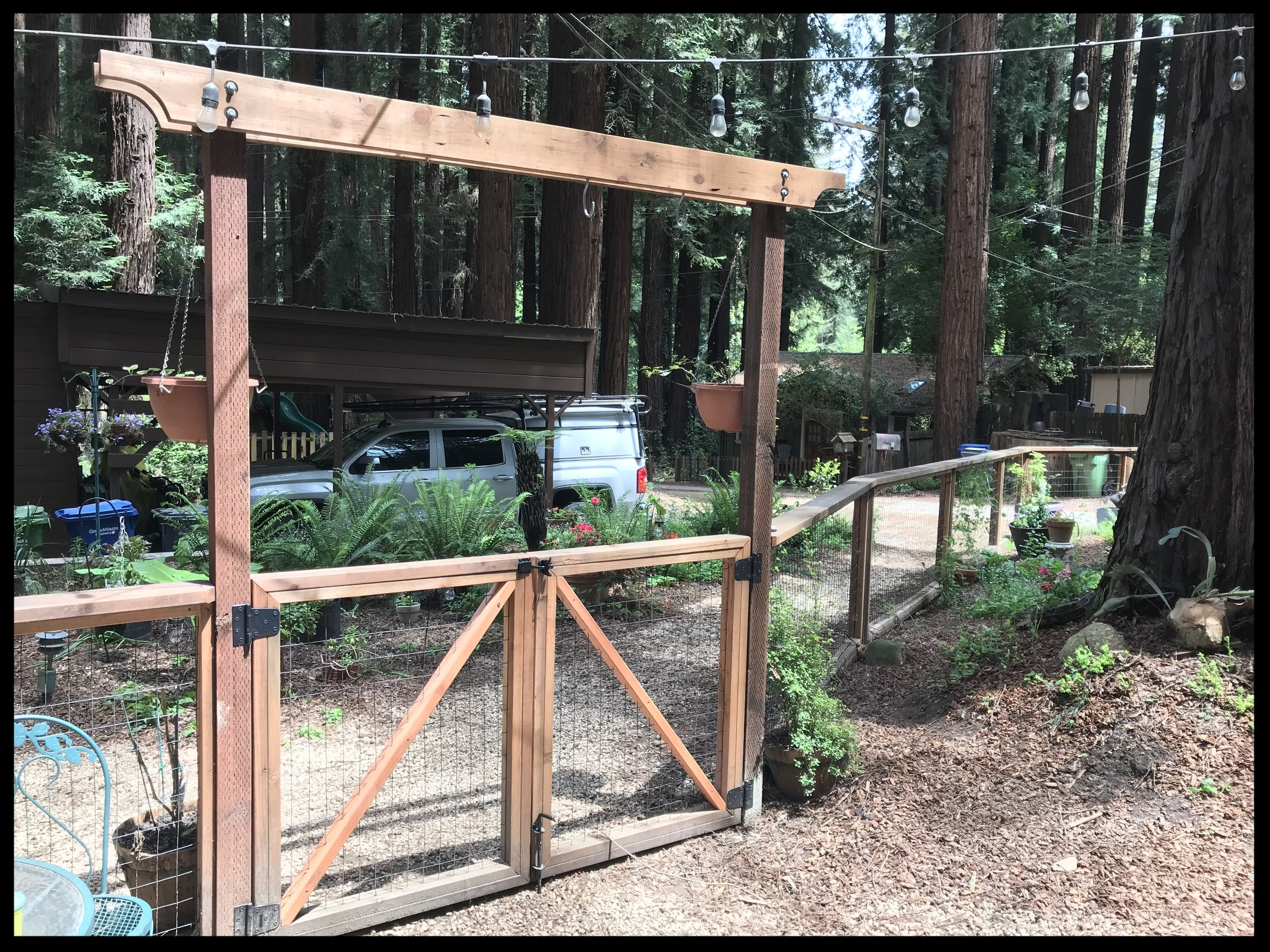 Simple, redwood double-gate with pergola by Tyson Durm, TD Home & Garden Solutions
