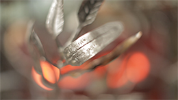 Forged From Fire - Leaves. Detail The Blacksmiths' Tree. Camera: Mike Wilkins (DoP)