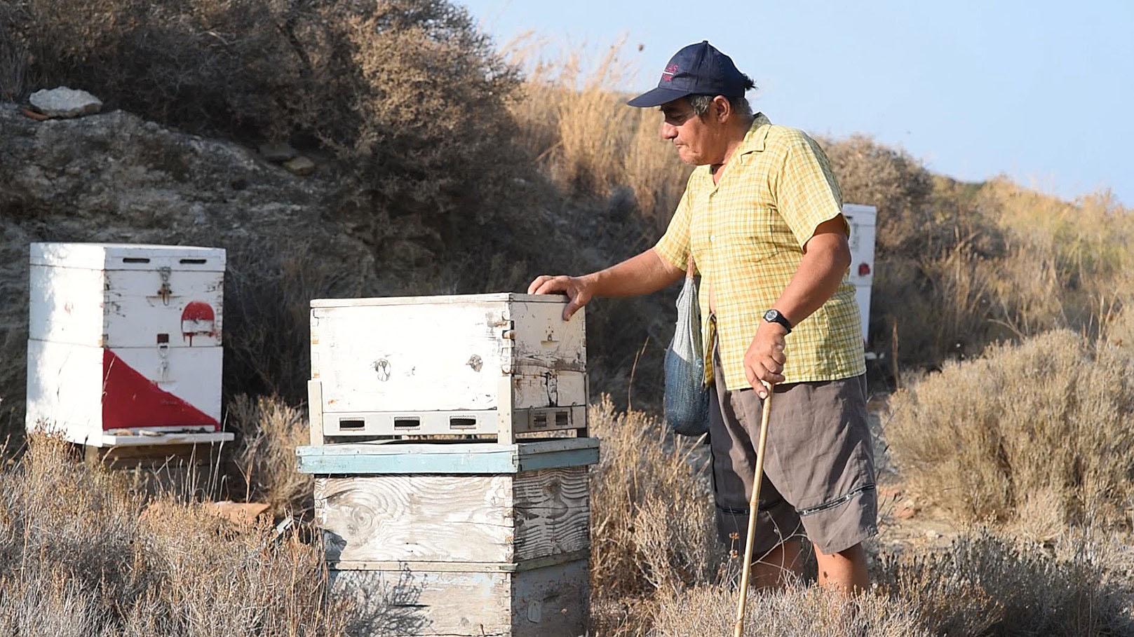 The Beekeepers - George with his beloved bees.