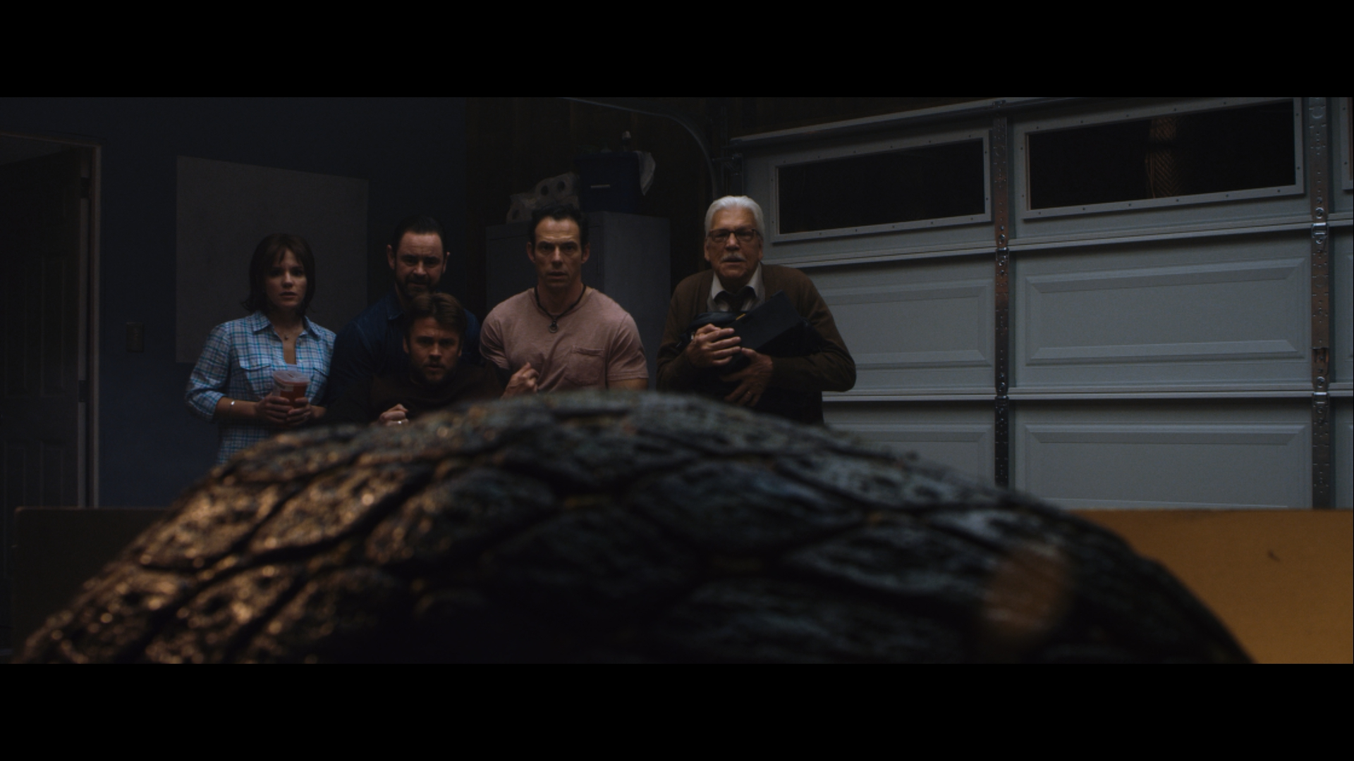 "Cheryl Texiera (""Terri""), Glenn Keogh (""Brent""), Luke Hemsworth (""Will""), Christopher Showerman (""Jonathan"") and Tom Atkins (""Prof. Westlake"") watch as their otherworldly visitor grows in size."
