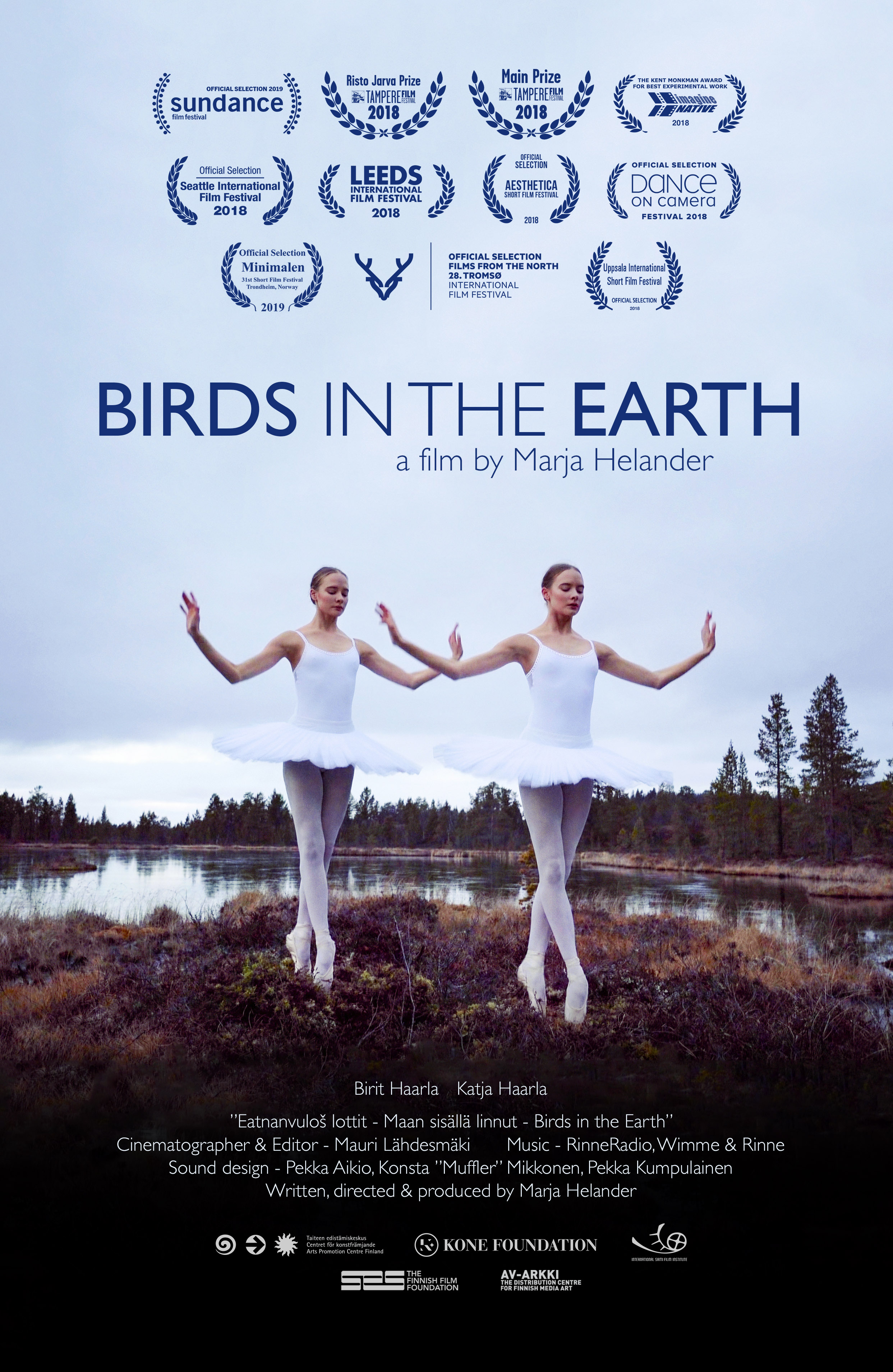 Birds in the Earth poster