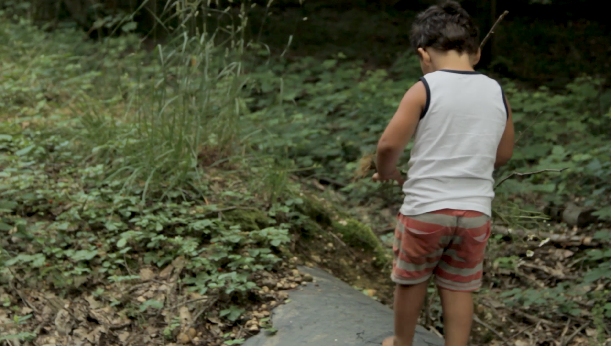 A child explores the Hambach Forest on a guided walk.
