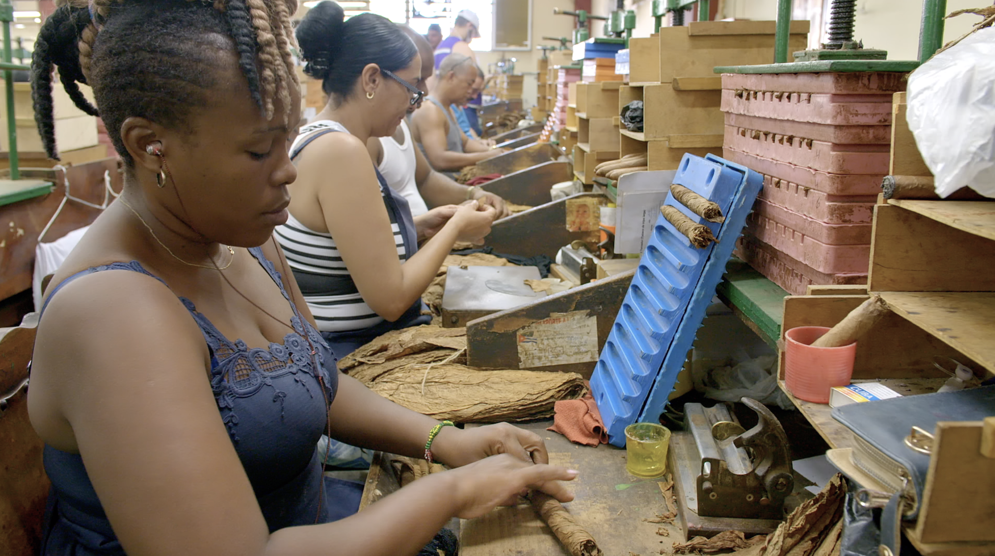 Women in the cigar factory rolling tobacco.