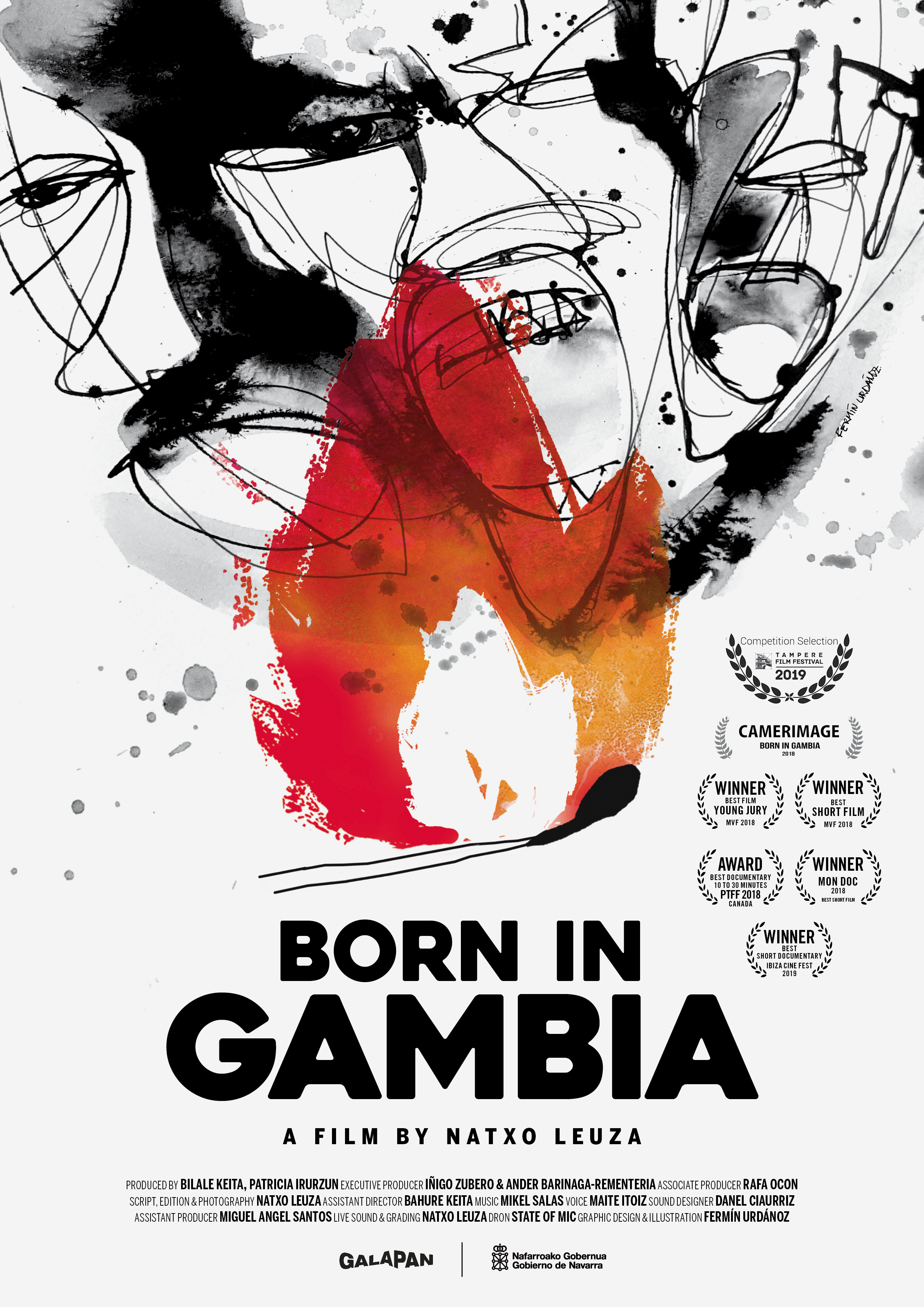 Born in Gambia poster
