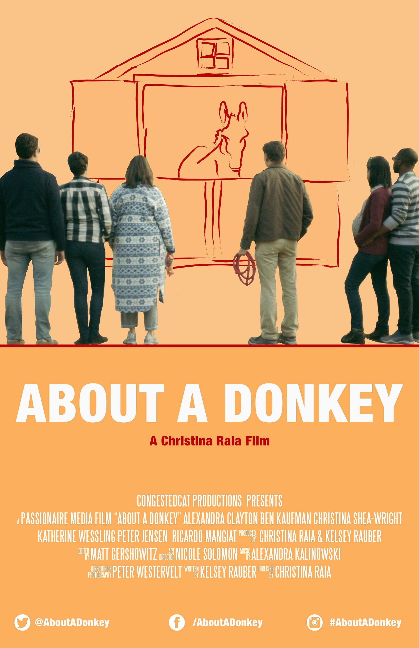 About A Donkey poster