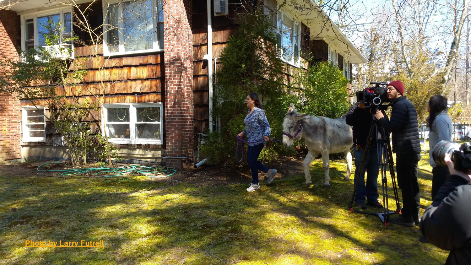 Behind the Scenes of About A Donkey