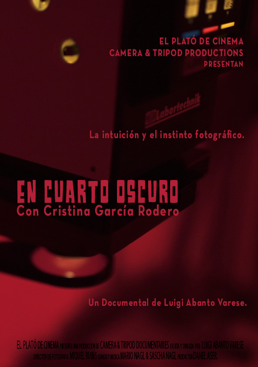 In the Dark Room poster
