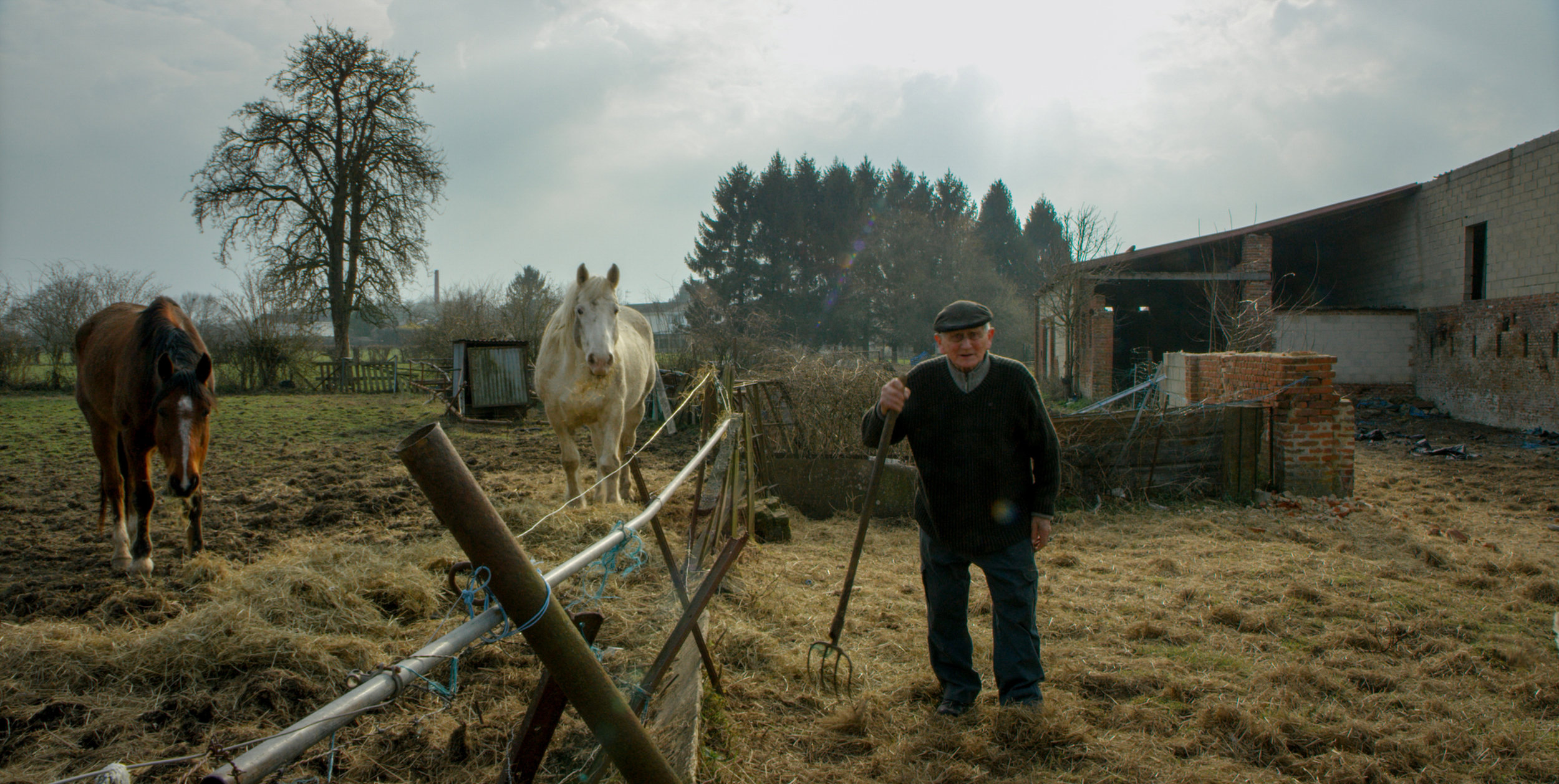 Roger, the oldest man of the village where Excess Will Save Us takes place, feeding the animals of his farm