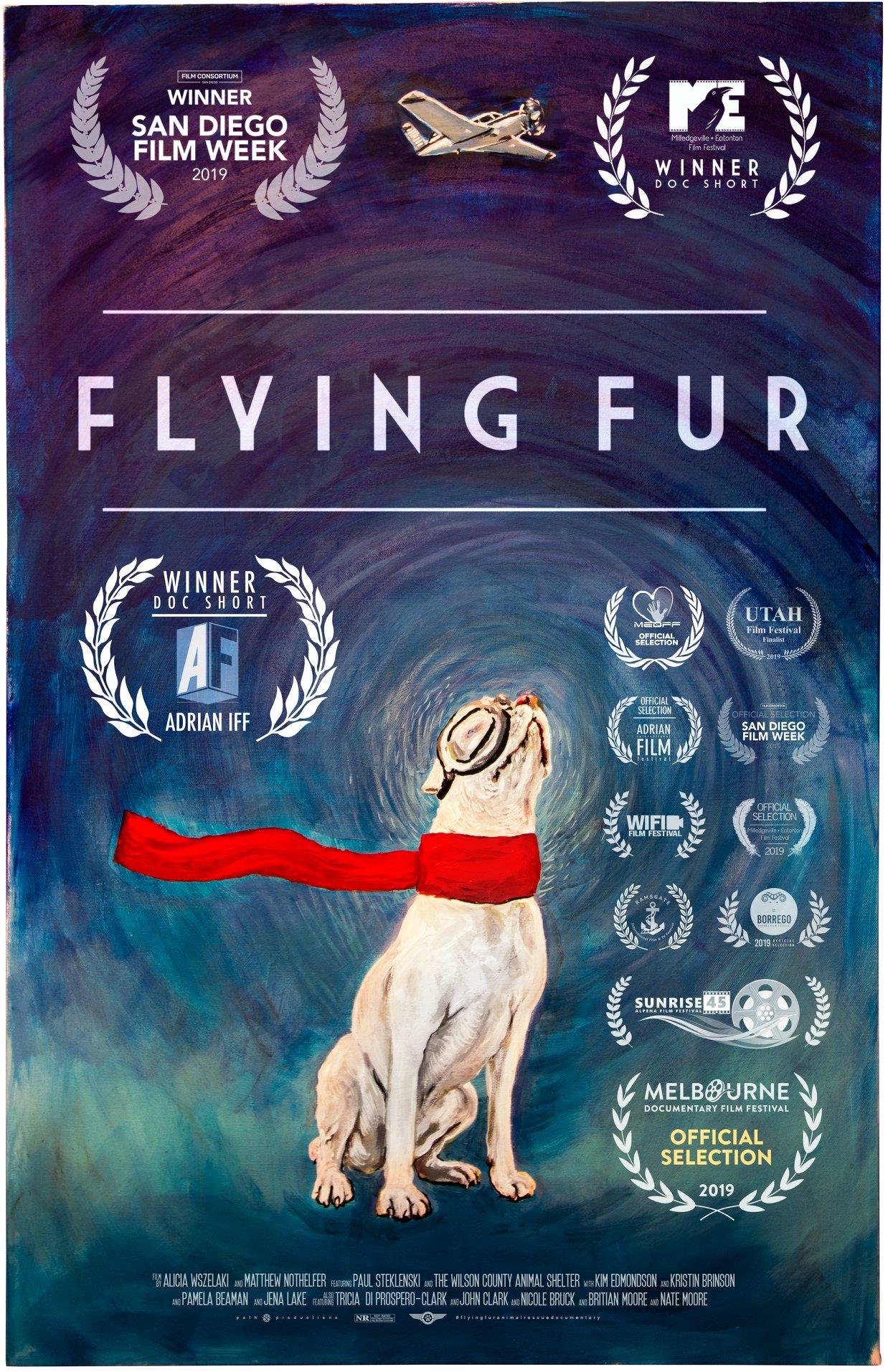 Flying Fur poster
