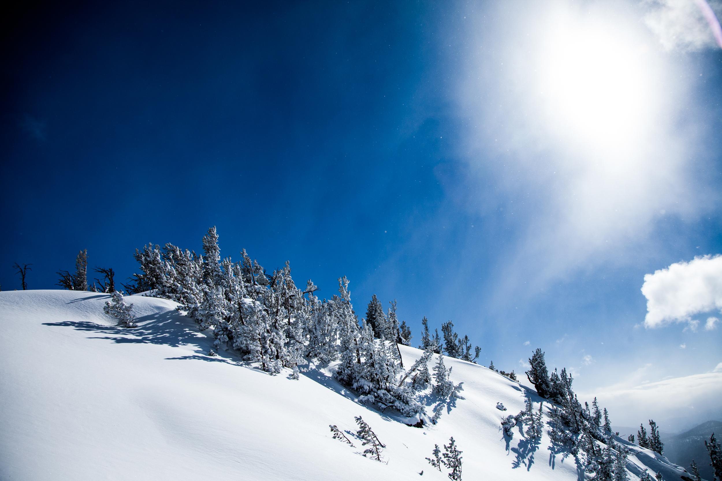 skiing-6.jpg