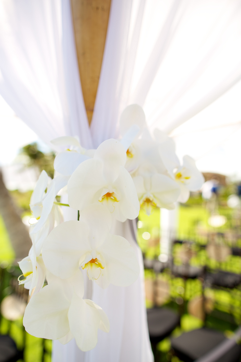 White orchid wedding ceremony floral decor by Bliss Wedding Design
