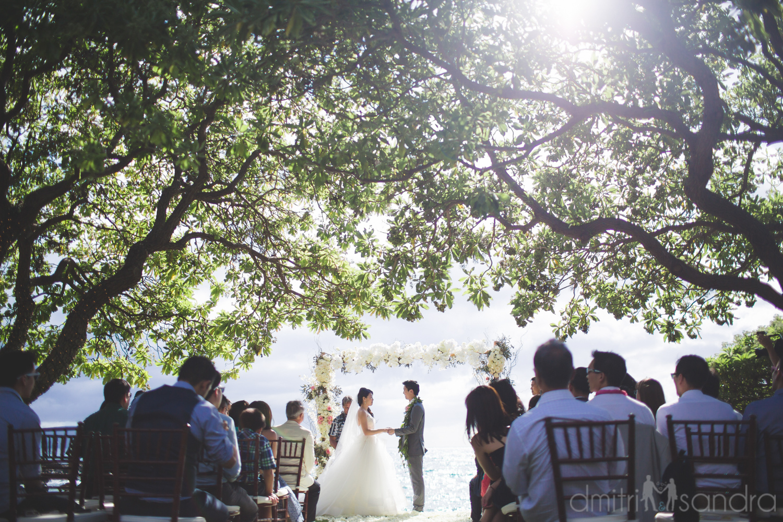 bliss-maui-wedding-kukahiko-estate-dmitri-and-sandra-photography-phoebe-simon-10.jpg