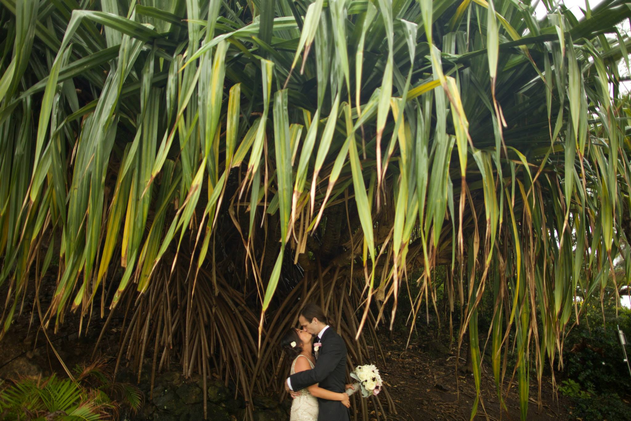 hawaii wedding romance