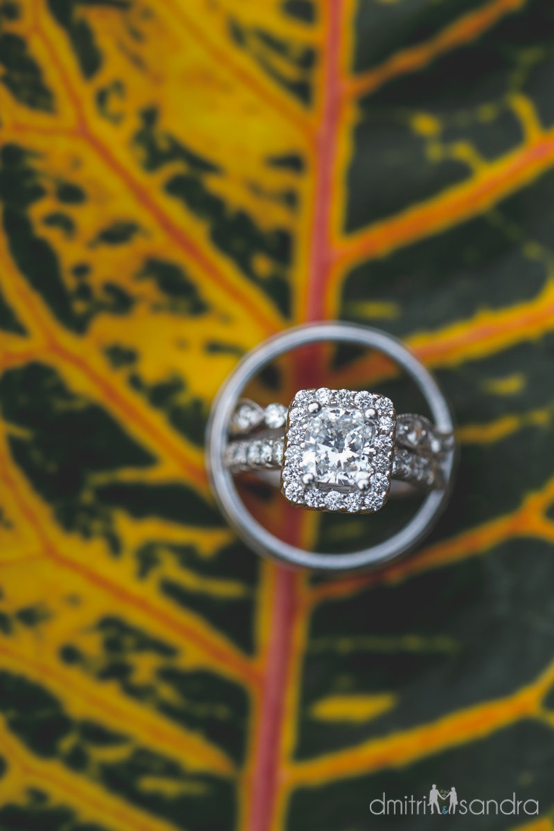 Bliss Wedding Design & Spectacular Events - wedding ring