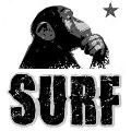 Monkey Surf Club - Riccione