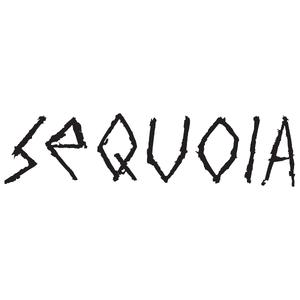 Logo-Sequoia-Surfboards.jpg