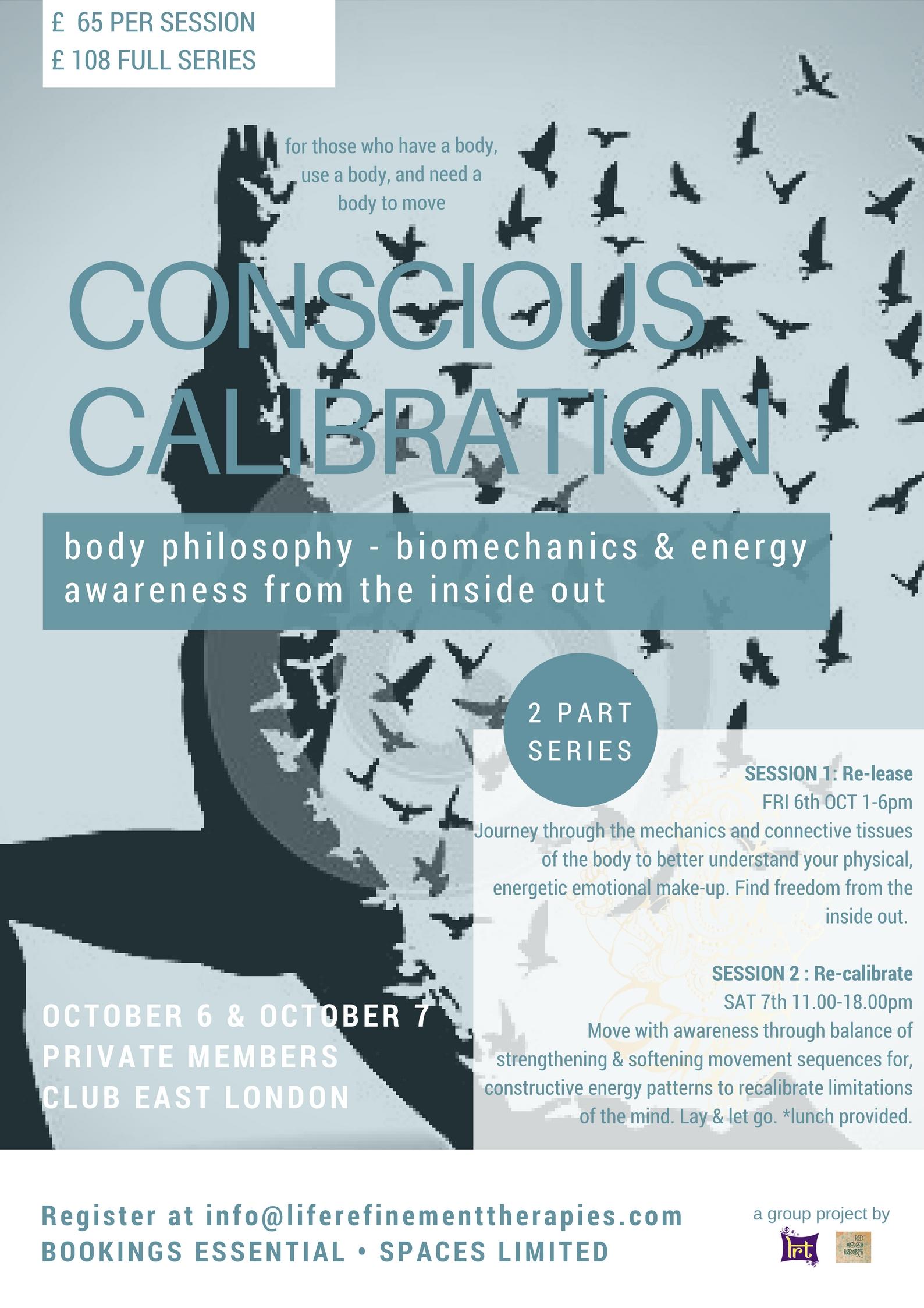 Conscious Calibration.jpg