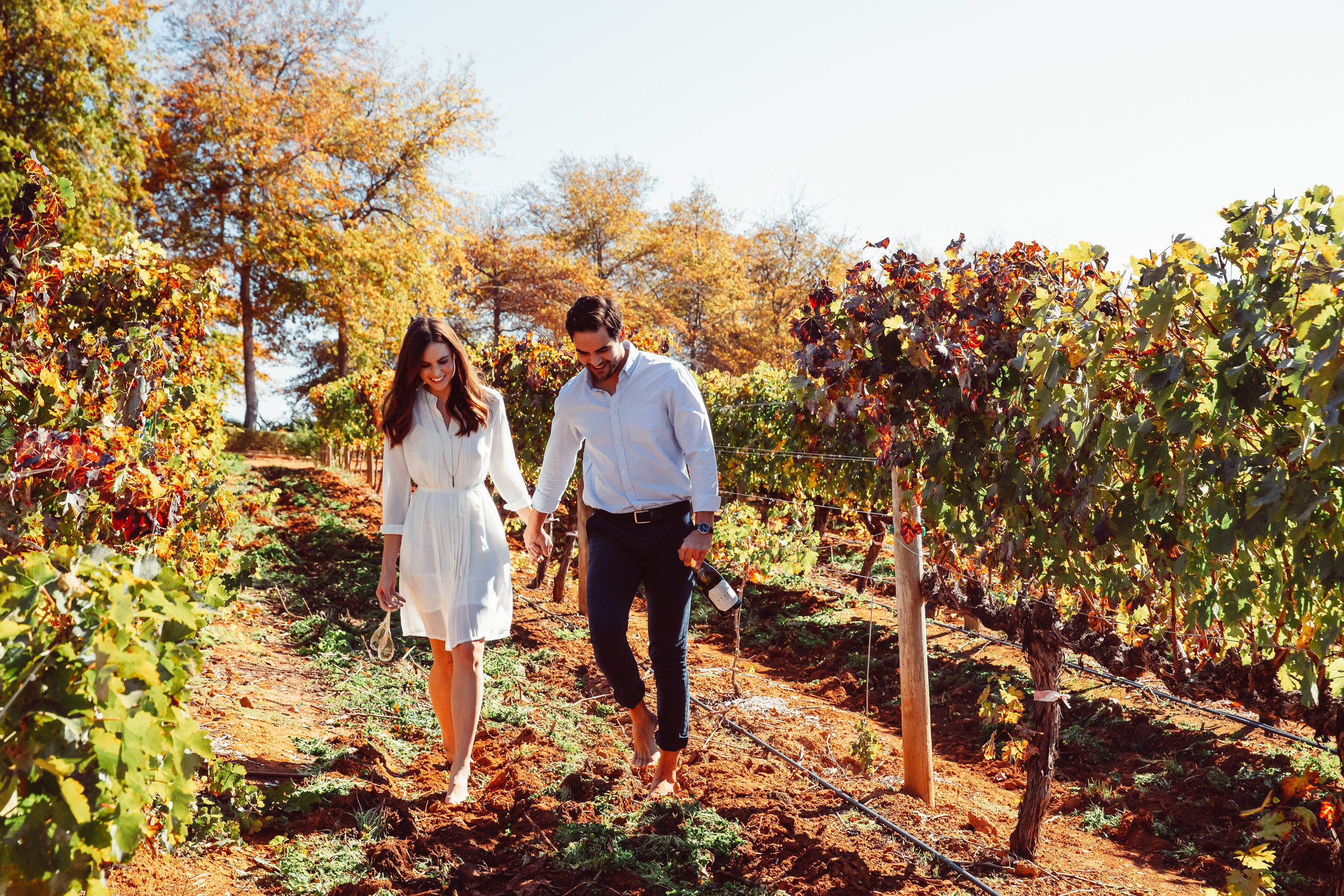 A romantic couple escape hand-in-hand with a bottle of champagne in the vineyards at Delaire Graff Estate