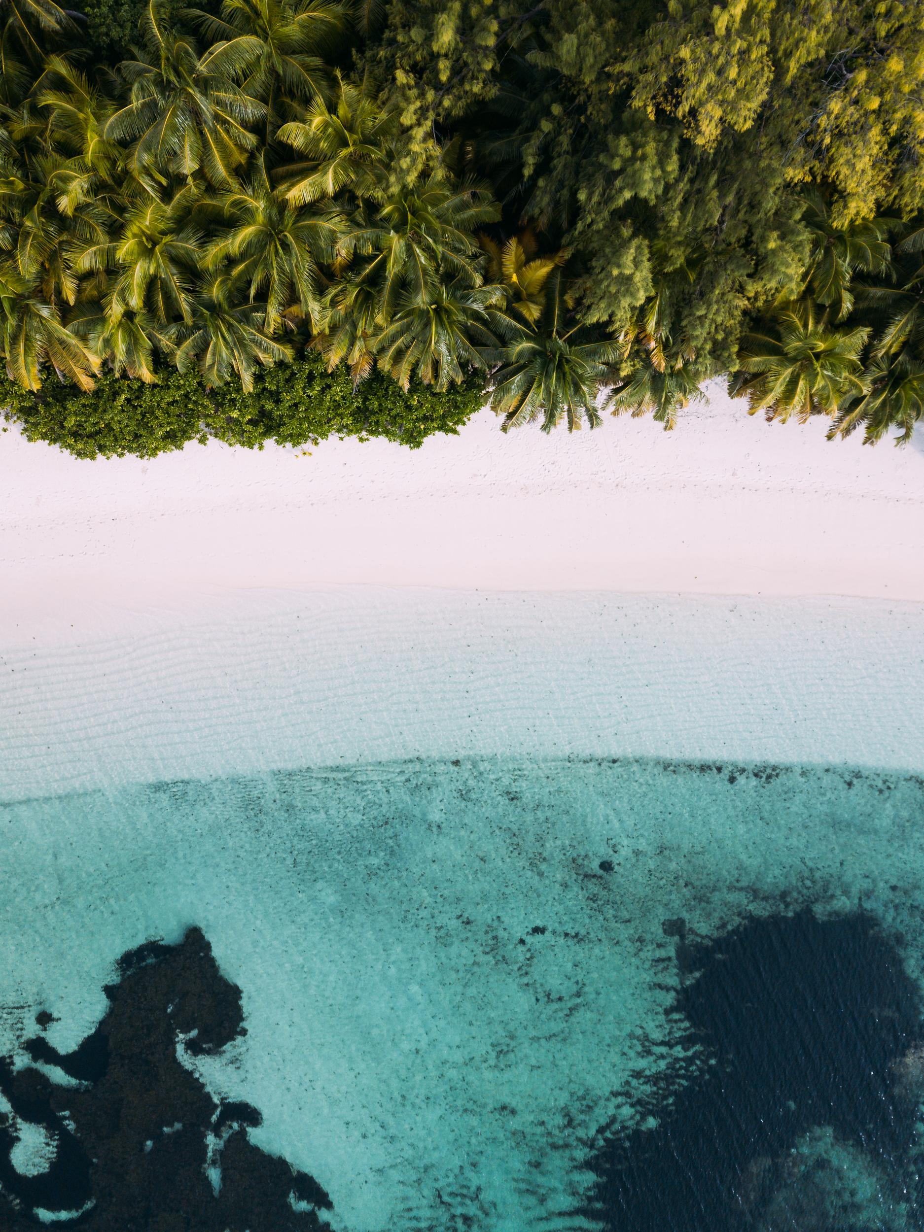 Four Seasons Resort Desroches, Seychelles