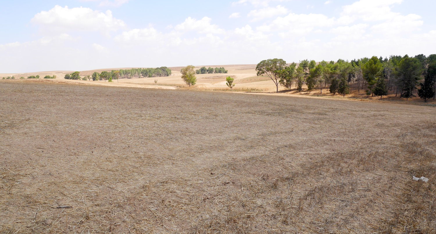 "Harvested fields in southern Israel. This area was once known as the ""Philistine Plain."""