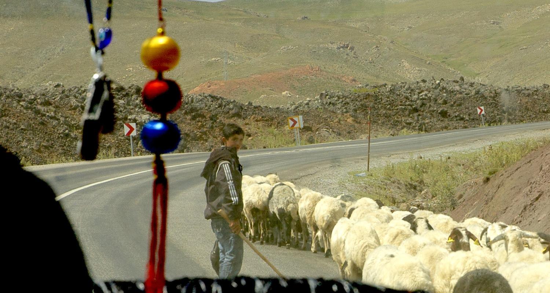 Passing a pastoral parade.