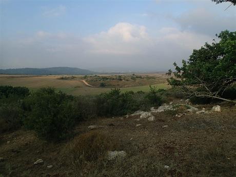 The rolling landscape of Lower Galilee.