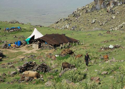 The summer campsites of pastoralists.