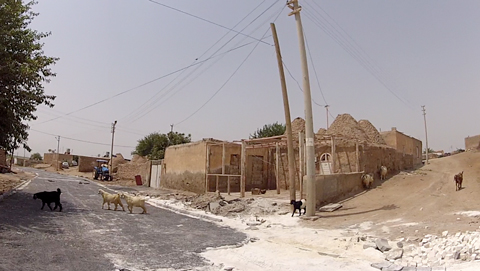 """Goats in Haran. Note the traditional """"beehive"""" shaped houses on the right."""