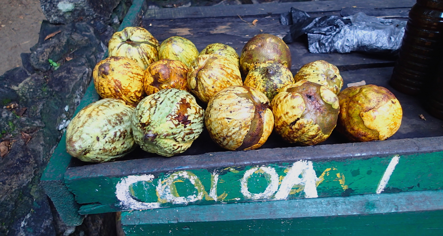 Cocoa pods for sale in West Africa.