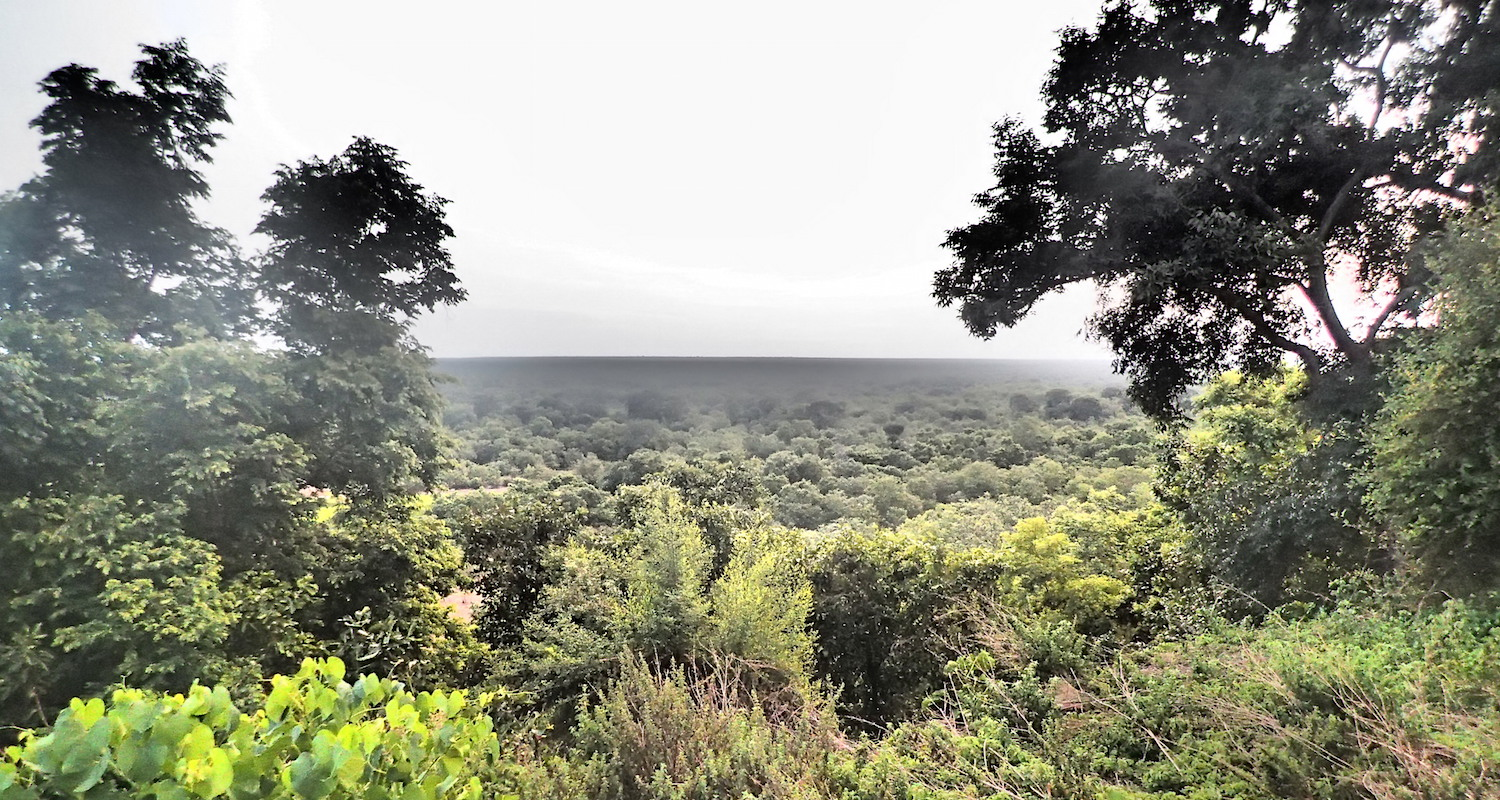 A bluff overlooking the Mole River.