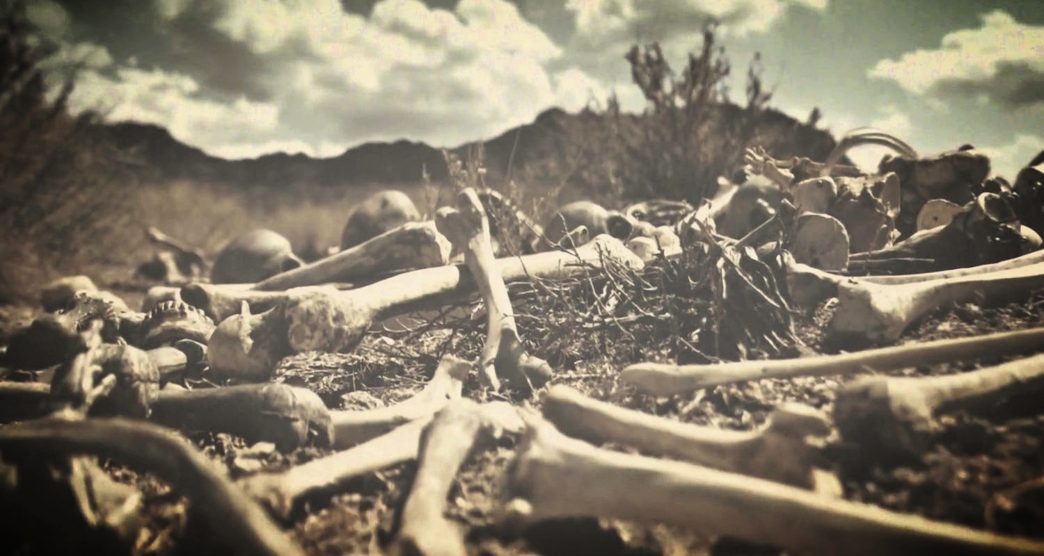 A valley of dry bones. Image from  here.