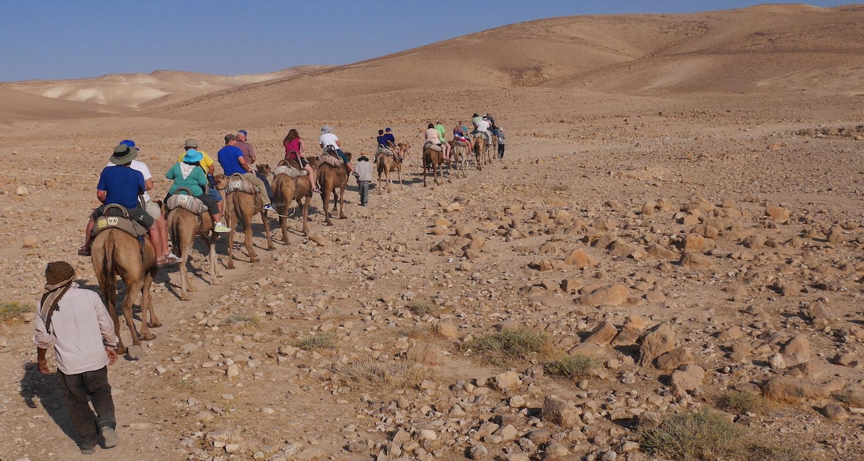 Camel riding in the Judean desert.