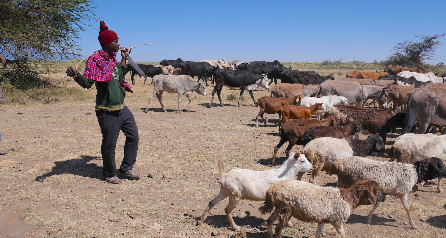 A herder passes our pee stop. I assume he was Maasai. He assumed I was taking Diamox.